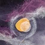 小望月~銀の月暈~