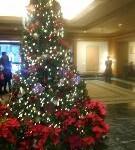 広いロビーにクリスマスツリー